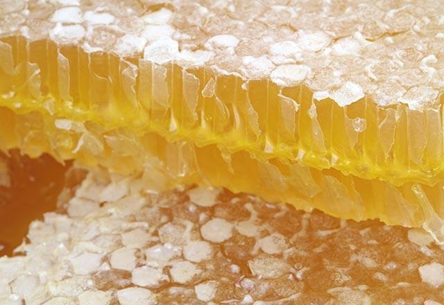 Bal mumu, arılarda rastlanan bakteri ve fungus hastalıklarını ve içinde bulunan akarisit ve insektisit ile tarımda kullanılan tüm zehirli kimyasal ilaç kalıntılarını içerebilmektedir.