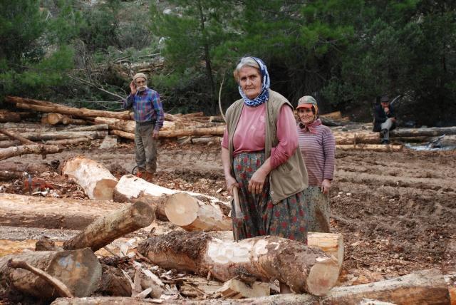 Antalya'nın Akseki ilçesine orman kesim işi için Mersin'den gelen işçiler arazide zorlu kış şartlarında zorlu yaşam mücadelesi veriyor. Tek göz naylon çadır ve ahşap barakalarda kalan işçiler göçebe bir yaşam sürdürüyor. Sürekli farklı alanlarda ağaç kestikleri için çadırlarını yanlarında taşımak zorunda kalan aileler, kış aylarında çam, yaz aylarında ise daha yüksek rakımlardaki ladin ağaçlarının kesimini yapıyor.