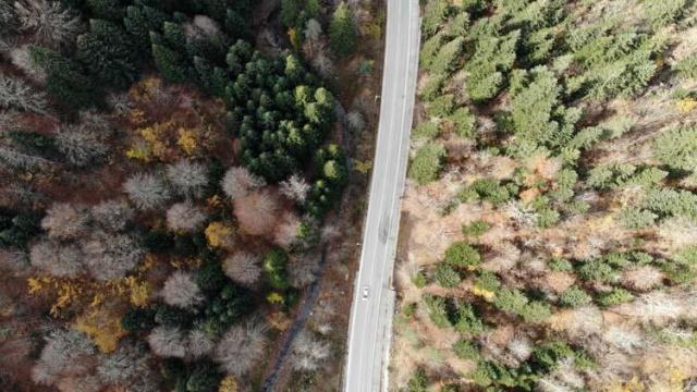 D-100 kara yolu ve Anadolu Otoyolu'nun Bolu Dağı kesimi ile doğal güzellikleriyle ünlü Abant Tabiat Parkı yolunda sonbaharın güzellikleri yaşanıyor.