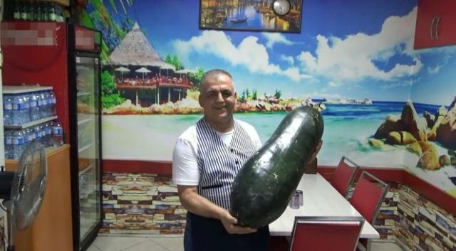 Bartın'da Kozcağız beldesi Ahmetler Mahallesi'nd yetiştirilen dev salatalığın tam 30 kilo gelmesi üreticisini bile şaşkına uğrattı.