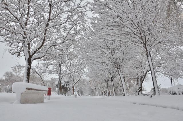 Kahramanmaraş'ın Elbistan ilçesinde etkili olan kar yağışı, kentin tamamını beyaza bürüdü. Kar kalınlığı ilçe merkezinde 10 santimetrenin üzerine çıkarken, yüksek kesimlerde ise 30 santimetreye ulaştı.