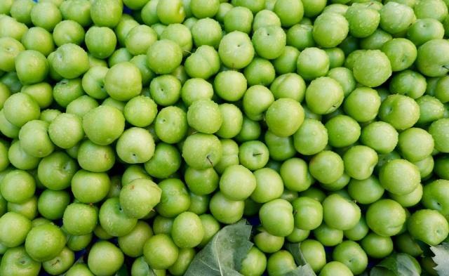 Agri Life Research Center' da yapılan yeni araştırmada; eriklerdeki antioksidan özellikleri incelenmiş, 100 farklı meyve ile karşılaştırılmış. Bu araştırmada antioksidanları kanser hücreleri ile etkileşime sokmuşlar.