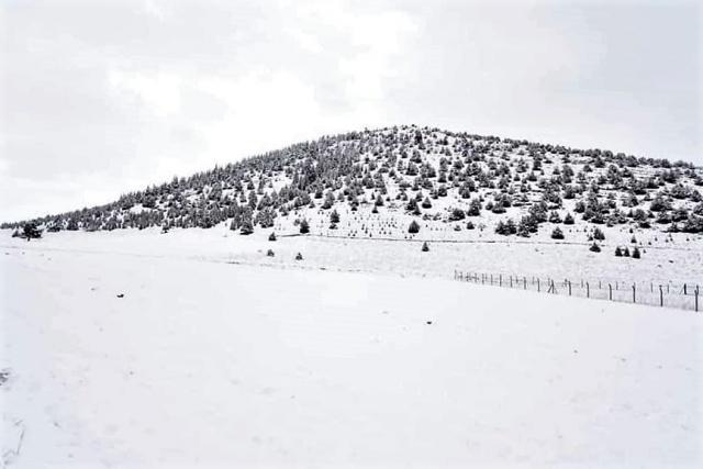Dulkadiroğlu ilçesindeki Yedikuyular mevkisi ve bölgedeki kayak merkezinde dün akşam saatlerinde başlayan sağanak yerini kar yağışına bıraktı.