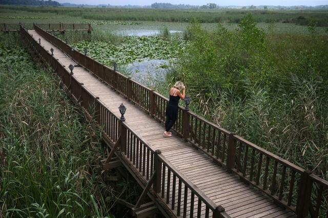 Yüzlerce kuş yılın belli aylarında buraya uğruyor. Adeta bir kuş cenneti...