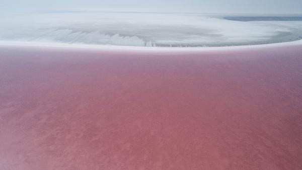 Türkiye'nin ikinci büyük gölü olan Tuz Gölü pembeye büründü