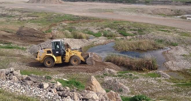 Büyükşehir Belediyesi vektörle mücadeleye devam ediyor