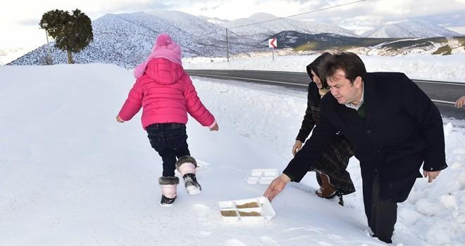 Başkan Erkoç, doğaya kendi elleriyle yem bıraktı