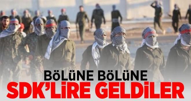 Terör örgütü YPG'nin yeni ismi: SDK