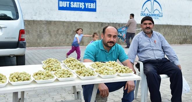 Dulkadiroğlu dut satış noktası'nda sezon açıldı