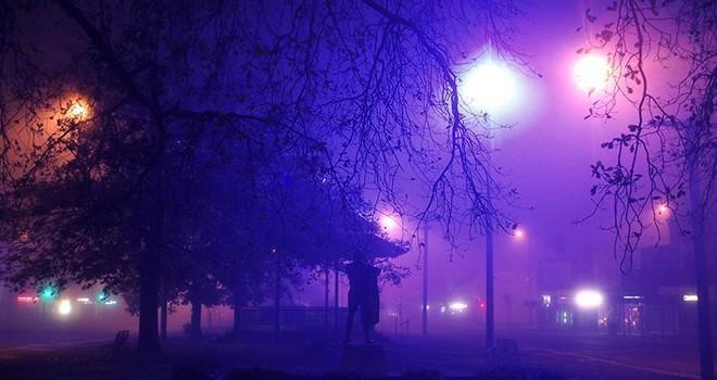 Artık 'caddeleri sokakları' bitkiler aydınlatacak