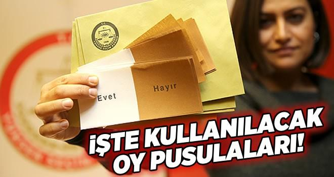 İşte 16 Nisan'da gerçekleşecek referandumda kullanılacak oy pusulaları