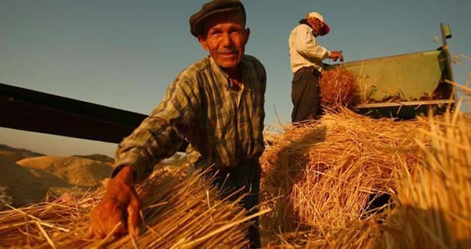 Çiftçilere destek ödemesi bugün başlıyor!