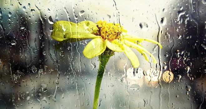 Kahramanmaraş'ta 09 Kasım Perşembe günü hava durumu nasıl olacak?