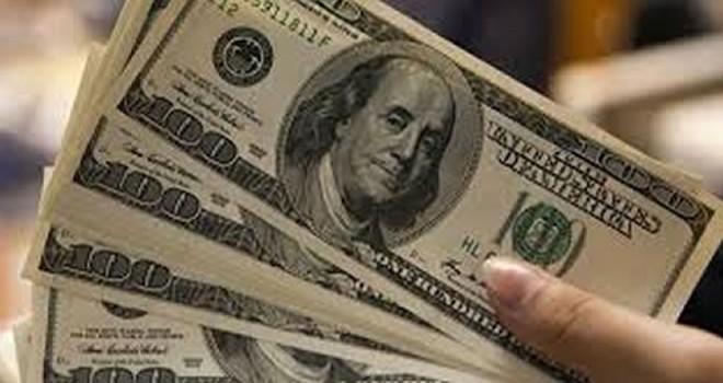 Hükümetten dolar açıklaması !