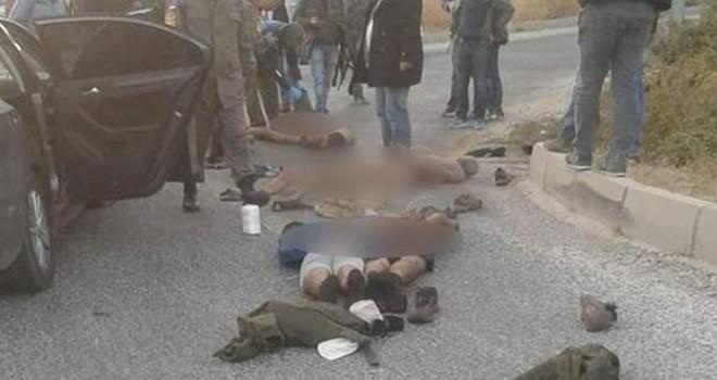Muğla'da çatışma! 5 terörist öldürüldü, 2'si aranıyor
