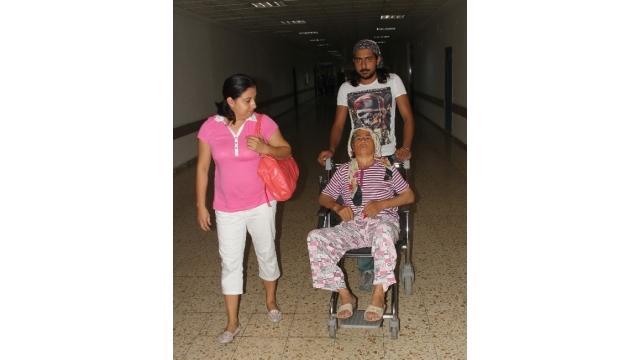 Arının Soktuğu Kadın Tekerlekli Sandalyeye Mahkum Oldu