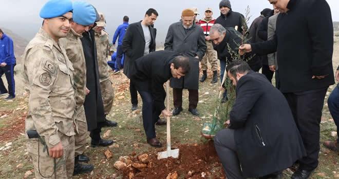 Pazarcık'ta, şehitlere vefa örneği