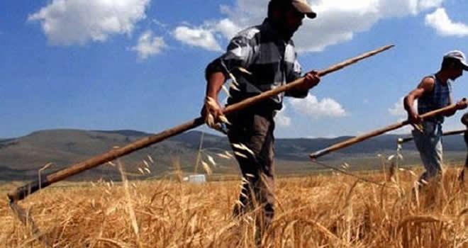 Başbakan Binali Yıldırım'dan çiftçilere müjde!