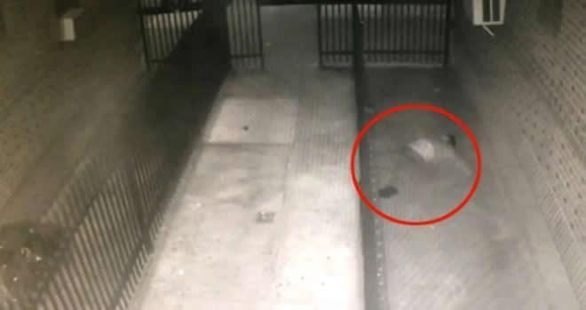 Çocuk tecavüzcüsü 4. kattan ölüme atladı