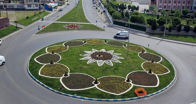 Kahramanmaraş'ta 5 milyon çiçek toprakla buluştu