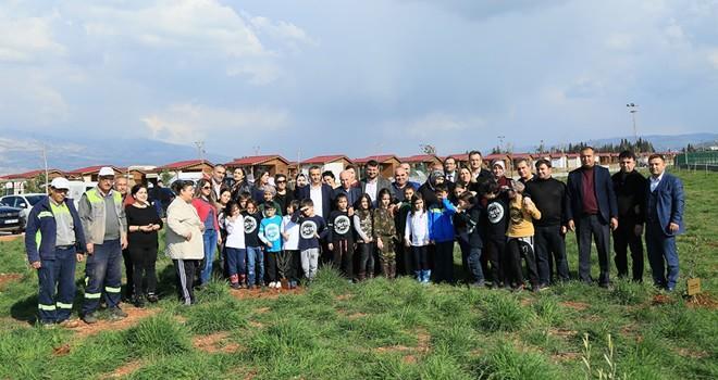 Afrin'e destek için zeytin fidanı