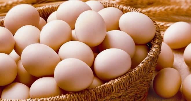 15 yumurta için 15 bin lira ceza!
