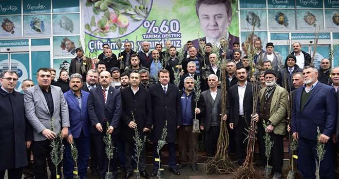 Büyükşehir'den Çiftçilere 160 Bin Fidan
