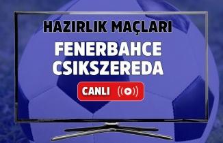 ÖZET İZLE: Fenerbahçe 2-0 Csikszereda maç özeti ve golleri izle