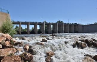 Kahramanmaraş'ta Ceyhan Nehri'nde binlerce balık telef oldu