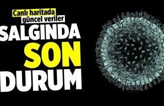 Türkiye'de il il koronavirüs vaka sayısı kaç? Hangi ilde kaç kişi öldü? (CANLI HARİTA)