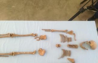 Kahramanmaraş'ta Orta Çağ Dönemi'ne ait çocuk iskeleti bulundu