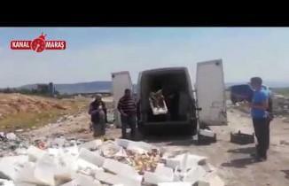 Kahramanmaraş'ta 1 Ton 800 kilo kaçak sazan balığı ele geçirildi