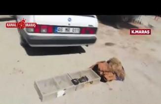 Kahramanmaraş'ta saka kuşları pahalıya patladı