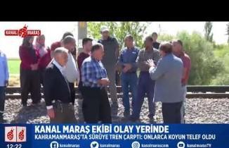 Kahramanmaraş'ta tren sürüye çarptı, çok sayıda küçükbaş hayvan telef oldu