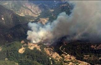 Kahramanmaraş'ta orman yangını: Yıldırım düştü!