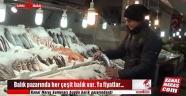 Balık pazarında her çeşit balık var Ya fiyatlar...
