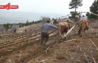 Kahramanmaraş'ta kırsal alanda yaşayan çiftçilerin karasaban mesaisi başladı