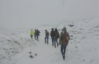 Mantar toplamak için dağa çıkan vatandaşlar hayatının şokunu yaşadı