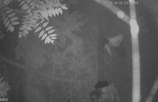 İstanbul'da sapık alarmı! Genç kız parkta tacize uğradı