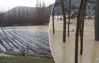 Kahramanmaraş'ta sağanak nedeniyle tarım arazileri su altında