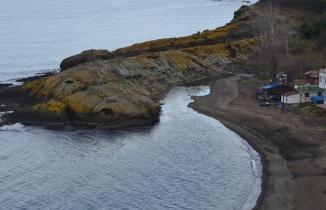 Timsaha benzeyen ada görenleri hayrete düşürüyor!